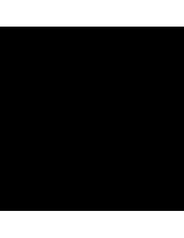 JARDIN DE NIEVE